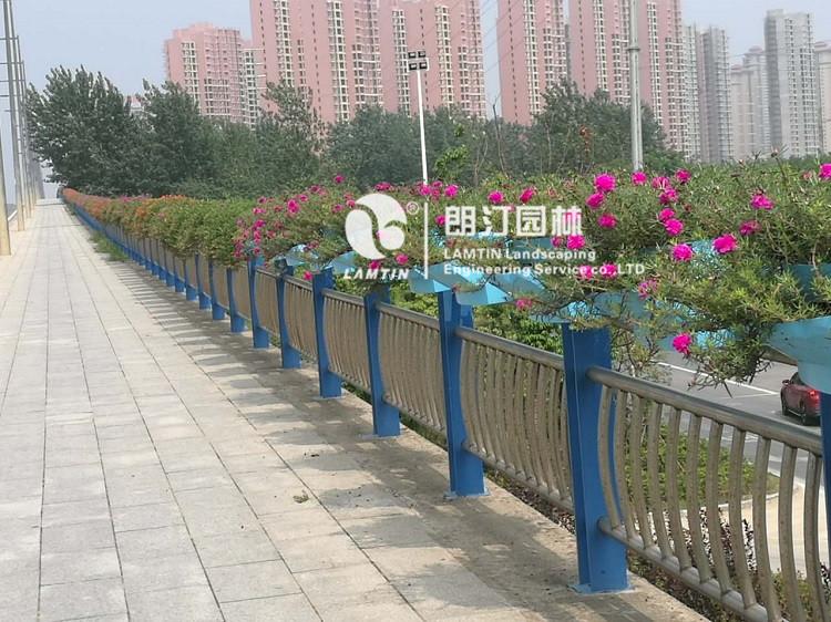 合肥护栏绿化花盆