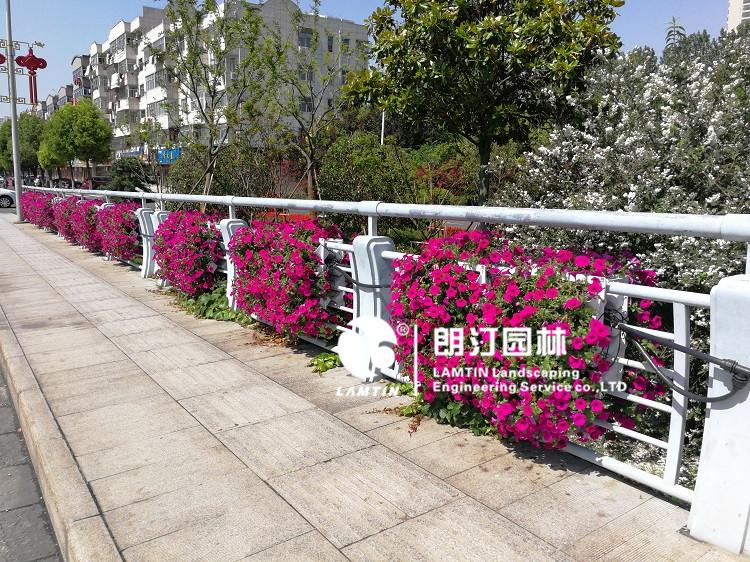 护栏挂花花盆