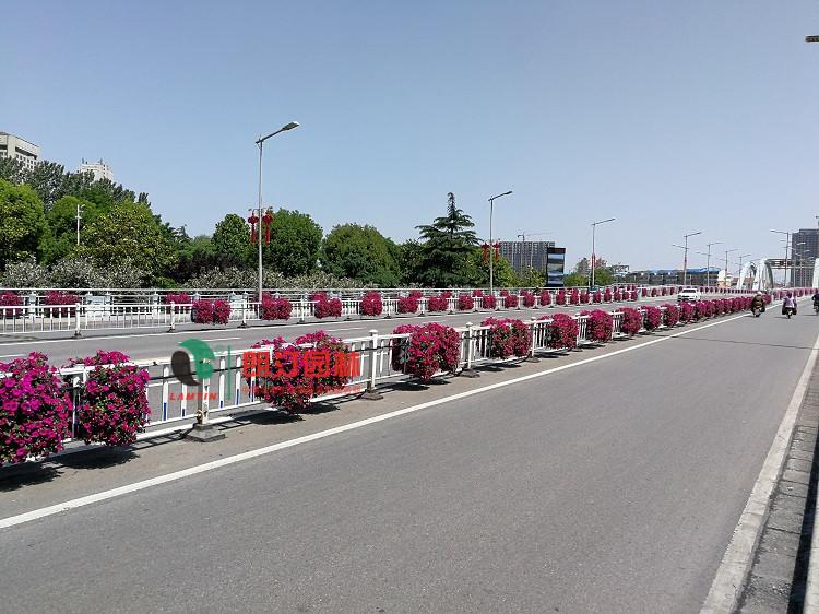 护栏绿化花盆